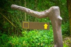 Zeiger auf einer Niederlassung im Wald lizenzfreie stockfotos