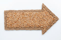 Zeiger mit Weizenkörnern Stockfotografie