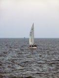 Zeilboot in Arabische overzees Royalty-vrije Stock Foto