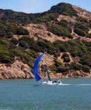 Zeilboot in de Baai van San Francisco Royalty-vrije Stock Afbeeldingen