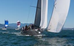 Zeilboot met spinnakers bij Rolex-Kop Royalty-vrije Stock Foto's