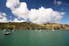 Zeilboten bij eiland Waiheke Stock Foto's