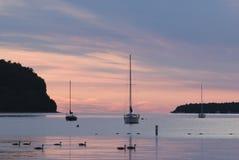 Zeilboten bij zonsondergang stock foto's