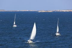 Zeilboten in de archipel Royalty-vrije Stock Foto's