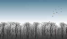 Zeile der Bäume auf dem Horizont Lizenzfreie Stockfotografie