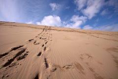 Zeile von Abdrücken herauf einen Wüstenhügel Stockfotografie