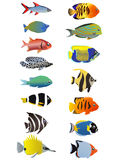 Zeile zwei der Fische lizenzfreie abbildung