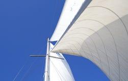 Zeilen in wind stock afbeelding