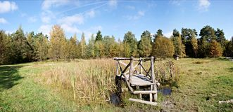 Biotope in a autumn landscape stock images