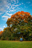 Zeit, Blätter zu harken Stockbilder