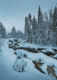 Zeit des verschneiten Winters in Nord-Norwegen Waldfluß in den Bergen Geitfjellet nahe Heia, Grong-Bereich lizenzfreie stockfotografie