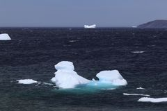 Zeit Neufundland-Eisbergs im Frühjahr stockbilder
