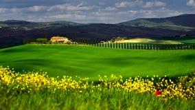 Zeit Toskana im Frühjahr mit Grünfeldern und gelben Blumen stockfotografie