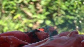 Zeit-Versehen von roter Paprika On Barbecue stock video footage