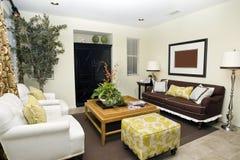 Zeitgenössisches Wohnzimmer Stockbild
