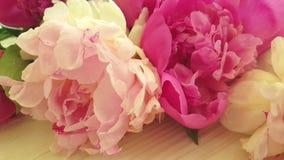 Zeitlupe-Blumenstrau?jahreszeit der Pfingstrosenblumenweinlese romantische in einem Vase compositionon ein grauer konkreter Hinte stock video