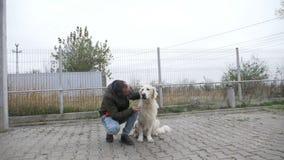 Zeitlupe eines weißen schönen Hundes, der Festlichkeiten von seinem Eigentümer nachdem Sein ergeben und dem Streicheln es empfäng stock footage