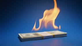 Zeitlupe: FlammenPapiergeld-Haufen US-Dollar stock video