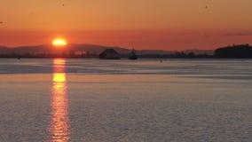 Zeitlupe Fraser River Sunrises 4K UHD stock video footage