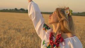 Zeitlupe, Nahaufnahme, Schönheit im nationalen Kostüm, das auf Weizen-Feld aufwirft stock video