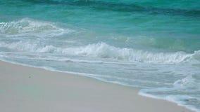 Zeitlupe-tropisches blaues Meereswoge-Brechen stock video