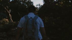 Zeitlupehintergrundschuß, glücklicher aktiver junger männlicher Tourist, der mit Rucksack unter schönem Sommersonnenuntergangwald stock footage