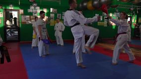 Zeitlupevideo erwachsener Taekwondo-Schulungseinheit in der Turnhalle, Trainer, der einen neuen Tritt erklärt stock footage