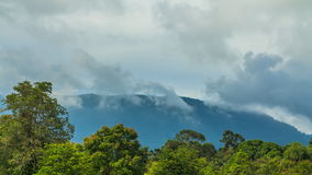 Zeitspanne bewölkt sich über dem Berg und dem grünen Wald stock video