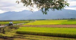 Zeitspanne der ländlichen Landschaft der Paddybauernhof- und -landstraße in Chishang-Gemeinde, Taitung County, Taiwan, Asien stock video