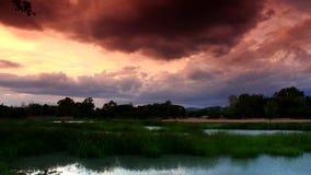 Zeitspanne der Teich mit Gras und gelbem Himmel stock footage