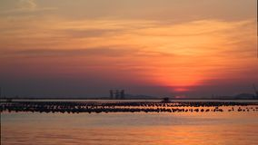 Zeitspanne des Sonnenuntergangs an den Fährendienstleistungen stock video footage