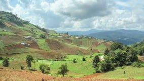 Zeitspanne des terassenförmig angelegten Gemüsefeldes, Thailand Lizenzfreie Stockfotos