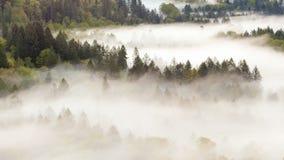 Zeitspanne-Nahaufnahmevideo des niedrigen Nebels über Sandy-Fluss in Sandy ODER im uhd 4k stock footage