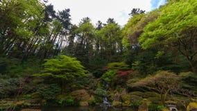Zeitspanne von Wolken über Wasserfall mit üppigen grünen Bäumen und Anlagen in der japanischen Garten-Frühlings-Saison 4k Portlan stock video