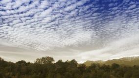 Zeitspannewolken über dem Herbstwald stock video