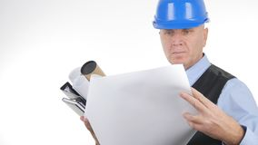 Zekere Ingenieur Reading Technical Plans op Witte Achtergrond royalty-vrije stock foto's