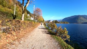 ZEL AM SEE AUSTRIA people and his dog enjoying a summer day at lake Zell am See in Austria. stock footage
