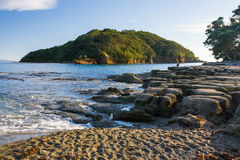 Остров новое Zeland Leigh северный Стоковое Изображение RF