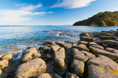 Остров новое Zeland Leigh северный Стоковое фото RF