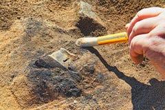 Zeldzame archeologisch vindt van het Ijzertijdperk stock afbeelding