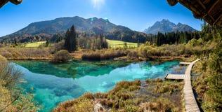 Zelenci湖在斯洛文尼亚 免版税库存照片