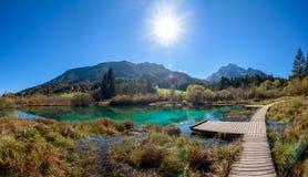 Zelenci湖在斯洛文尼亚 免版税图库摄影