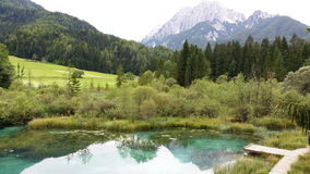 Zelenci Royalty Free Stock Photo