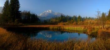 Zelenci naturalna rezerwa Slovenia zdjęcie stock