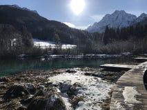 Zelenci wiosny, Kranjska Gora, Slovenija zdjęcia royalty free