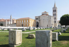 Zeleni quadrato Dalmazia zadar Croazia Europa Fotografia Stock Libera da Diritti