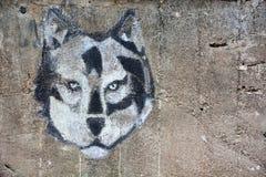 ZELENOGORSK, РОССИЯ: Голова на стене на Zelenogorsk, Россия волка на 13-ое сентября 2017 Стоковое Фото