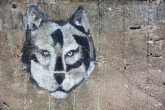 ZELENOGORSK, RUSSIA: Wolf head on the wall at the Zelenogorsk, Russia at September 13, 2017. Wolf head on the wall at the Zelenogorsk, Russia at September 13 stock photo