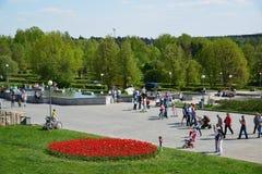 Zelenograd, Россия - 9-ое мая 2016 Прогулка людей в парке победы весной Стоковые Изображения