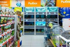 Zelenograd, Russia - 15 settembre 2017 Deposito dell'animale domestico di quattro zampe al centro commerciale Panfilov Immagini Stock Libere da Diritti
